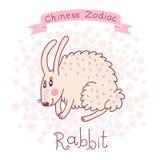 Китайский зодиак - кролик Стоковое Изображение RF