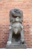 китайский камень льва Стоковые Фотографии RF