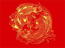 Китайский карп Стоковая Фотография