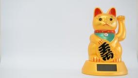Китайский кот удачи акции видеоматериалы