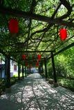 китайский красный цвет фонарика Стоковые Изображения RF