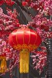 китайский красный цвет фонарика Стоковые Изображения