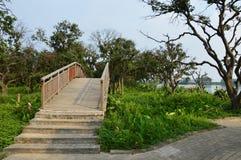 Китайский мост сада Стоковое Изображение RF