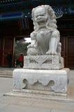 Китайский мраморный каменный лев сидит перед традиционным покрашенным павильоном стрехи Стоковая Фотография