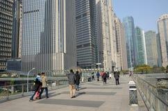 Китайский Новый Год в Шанхае Стоковая Фотография RF