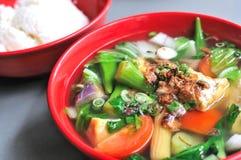 китайский овощ супа Стоковые Изображения RF