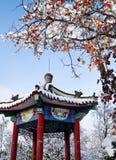 Китайский павильон в зиме стоковые изображения