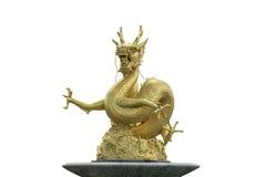 китайский дракон золотистый Стоковые Изображения RF