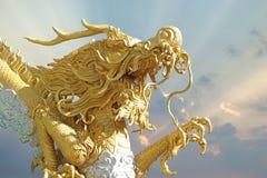 китайский дракон золотистый Стоковые Фото