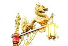 китайский дракон золотистый Стоковое Изображение RF