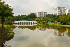 китайский сад singapore Стоковые Изображения