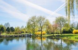 Китайский сад исправленной луны в садах мира ландшафта фокуса поля дня облаков сини небо выставки заводов движения должного польн Стоковая Фотография RF