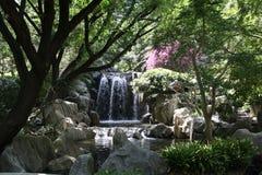 Китайский сад приятельства Стоковая Фотография RF