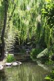 Китайский сад приятельства Стоковое Фото