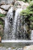 Китайский сад приятельства Стоковое фото RF