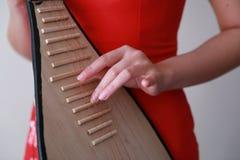 Китайский совершитель фольклорной музыкы играя пипу Стоковая Фотография RF