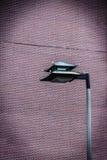 Китайский столб лампы в Boston's Чайна-тауне Стоковые Фотографии RF