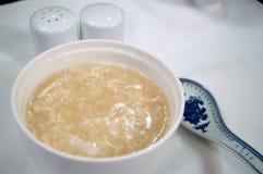 китайский суп акул ребра Стоковые Фотографии RF