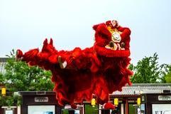 Китайский танец льва Нового Года Стоковые Изображения