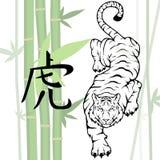 китайский тигр Стоковое Фото