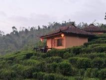 китайский тип дома Стоковое Фото