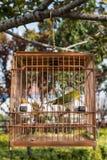 Китайский фарфор Шанхая парка gucheng birdcage стоковая фотография