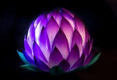 Китайский фонарик лотоса для среднего празднества осени Стоковые Изображения