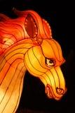 Китайский фонарик лошади Стоковое Изображение RF