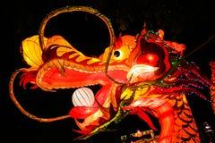 Китайский фонарик дракона Стоковое Изображение