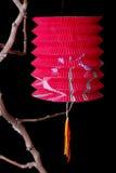 китайский фонарик Стоковые Фотографии RF