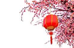 Китайский фонарик Стоковые Изображения RF