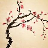 китайский цветок иллюстрация штока
