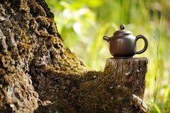 Китайский чайник глины на старом деревянном пне с мхом на ярком gree Стоковые Изображения