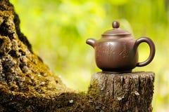 Китайский чайник глины на старом деревянном пне с мхом на ярком gree Стоковое Изображение RF