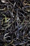 китайский чай крупного плана Стоковые Фото