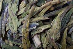 китайский чай крупного плана Стоковые Фотографии RF