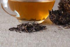 Китайский чай Puer, крупный план Стоковые Фото