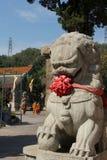 Китайский львев радетеля стоковые фото