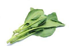 Китайский kale стоковое изображение rf