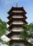 китайский pagoda singapore сада Стоковое Изображение