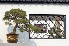 Китайский potted ландшафт Стоковое Изображение RF