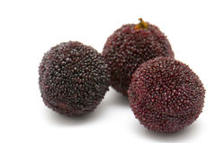 Китайский waxberry Стоковые Изображения