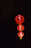 Китайское красное lampion Стоковые Изображения RF