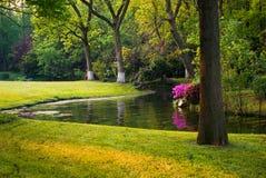 китайское лето сада Стоковое Фото