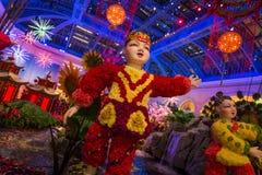 китайское Новый Год украшений Стоковое фото RF