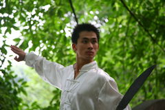 китайское kongfu Стоковые Изображения RF
