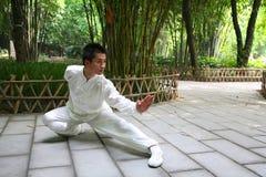 китайское kongfu Стоковое Фото