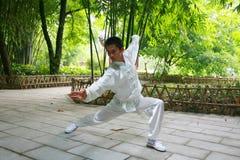 китайское kongfu Стоковые Фотографии RF