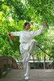 китайское kongfu Стоковые Фото