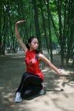 китайское kongfu Стоковое Изображение RF